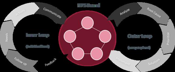 NPS Loops
